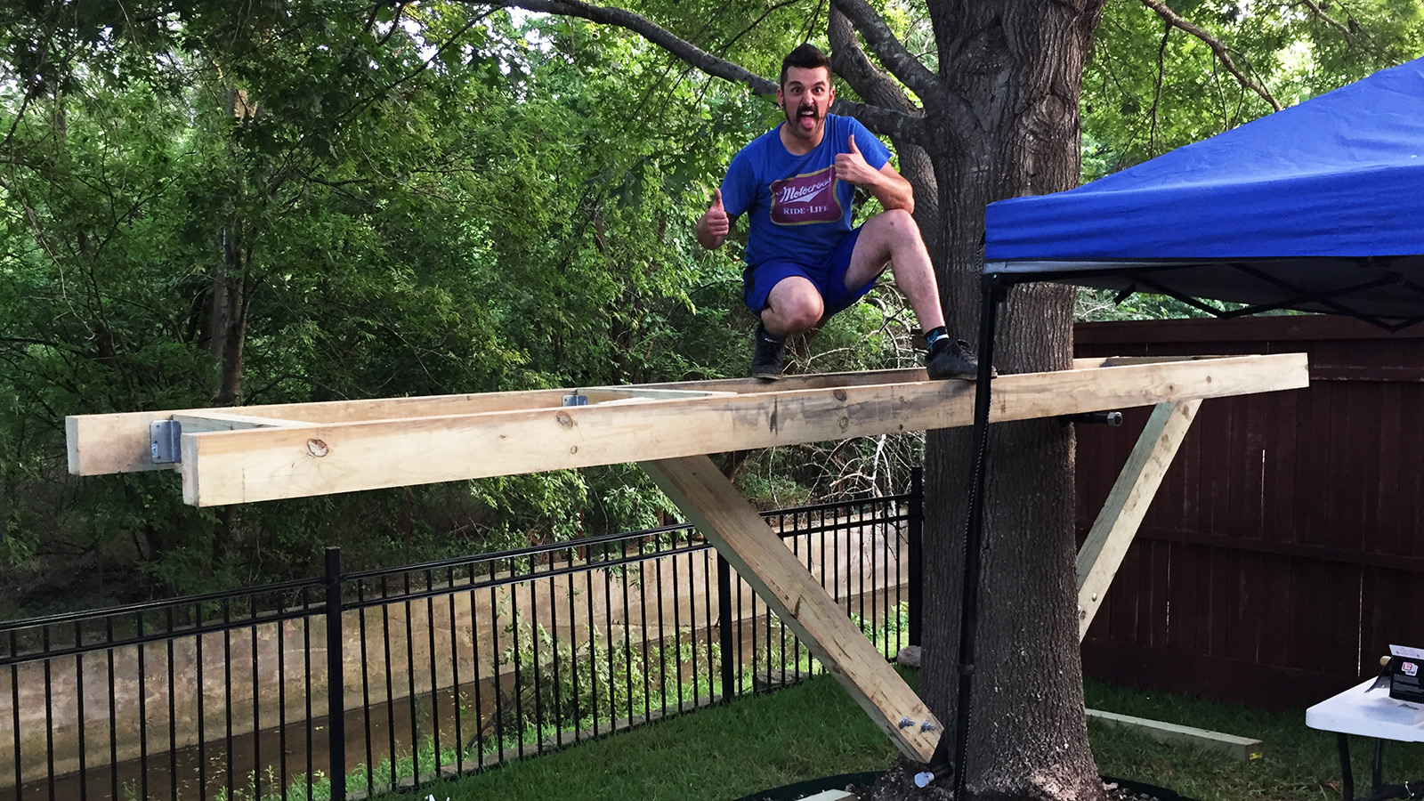 Building A Treehouse My Thoughts And Learnings Purveyor